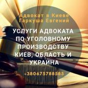 Legal services Kiev. Lawyer assistance Kiev